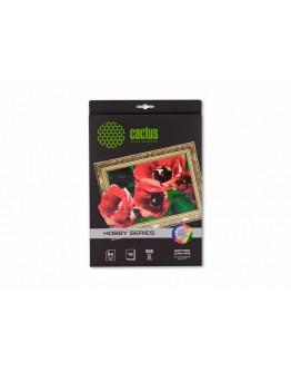 Холст Cactus CS-CA426010 A4/300г/м2/10л. для струйной печати