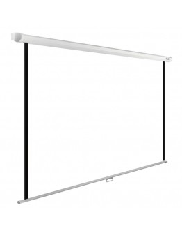 Экран Cactus 138x220см WallExpert CS-PSWE-220x138-WT 16:10 настенно-потолочный рулонный белый